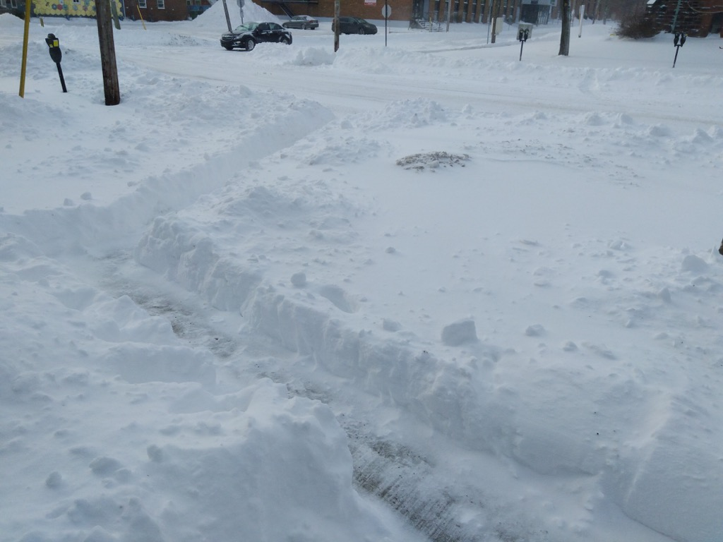 Photo of our front yard, where I've dug a tunnel to the street through the snow.