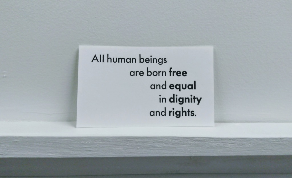 Universal Declaration of Human Rights, Article 1