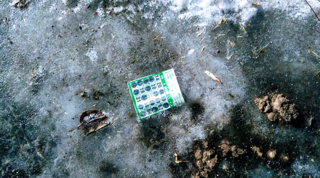 Photo of a BINGO card frozen in the ice in front of our house.
