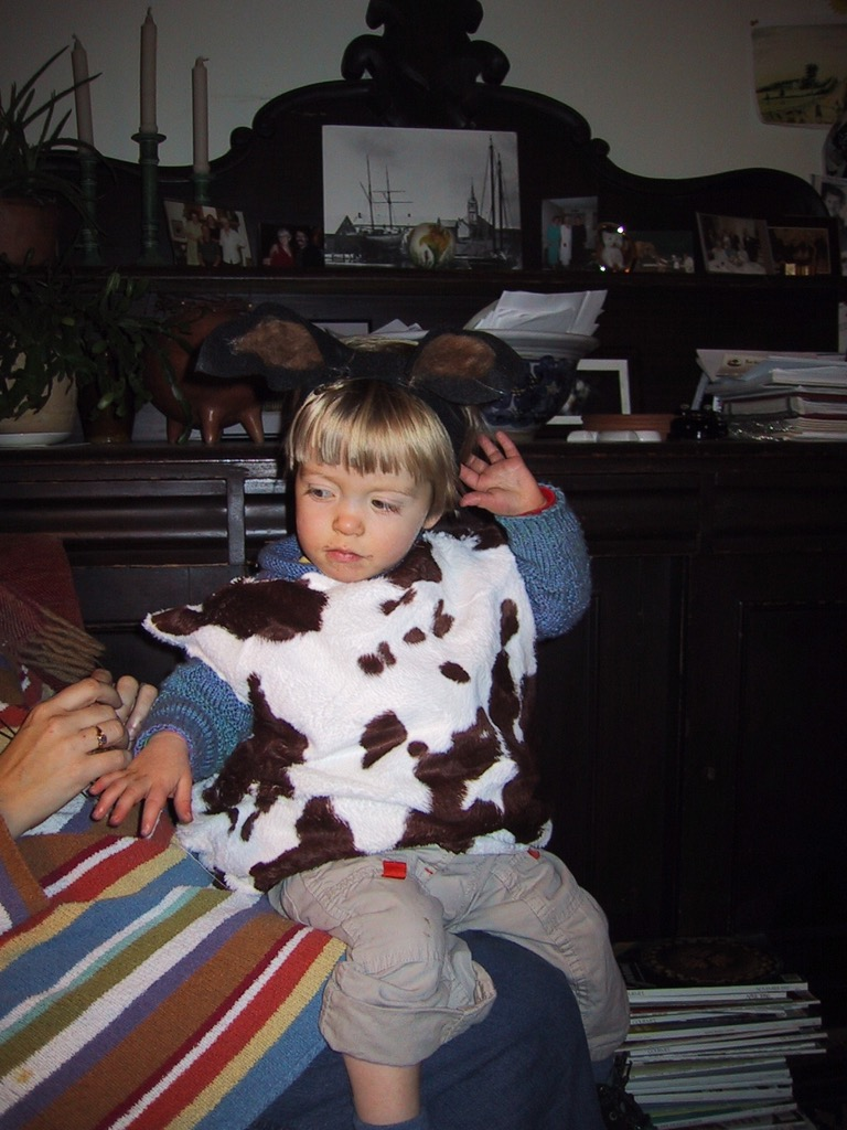 Oliver in a Cow Costume at 222 Sydney Street
