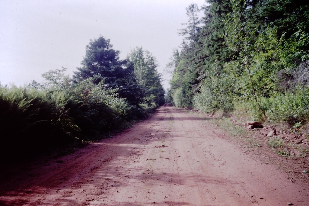 Clay road on PEI.