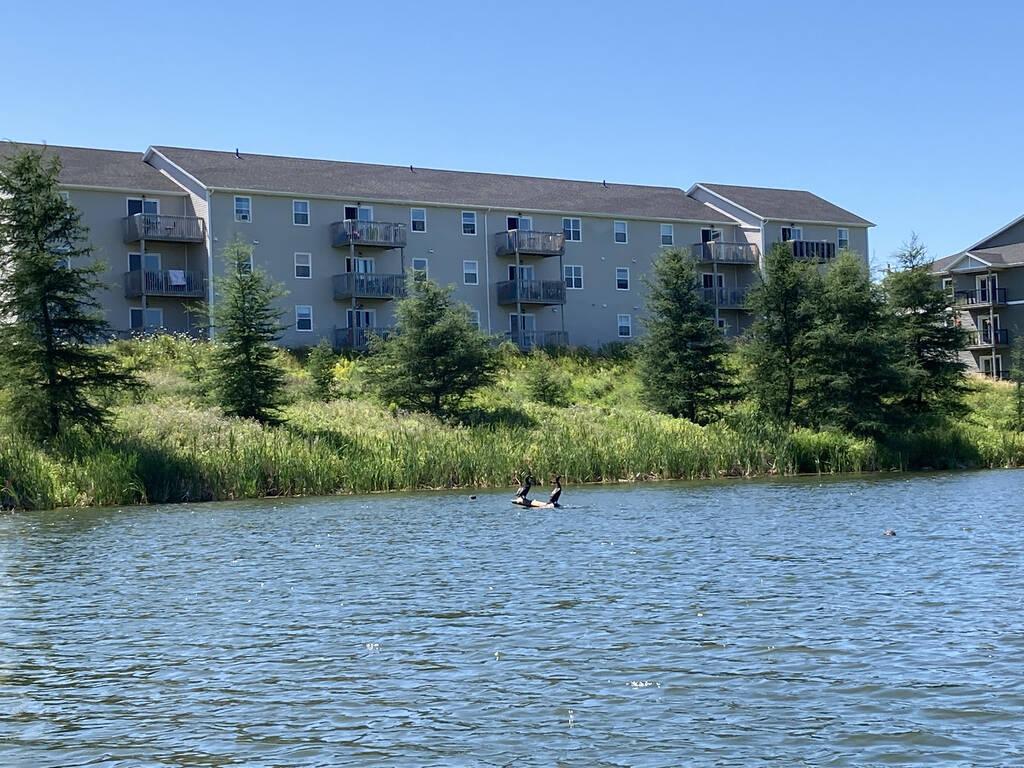 Apartment buildings near Andrews Pond