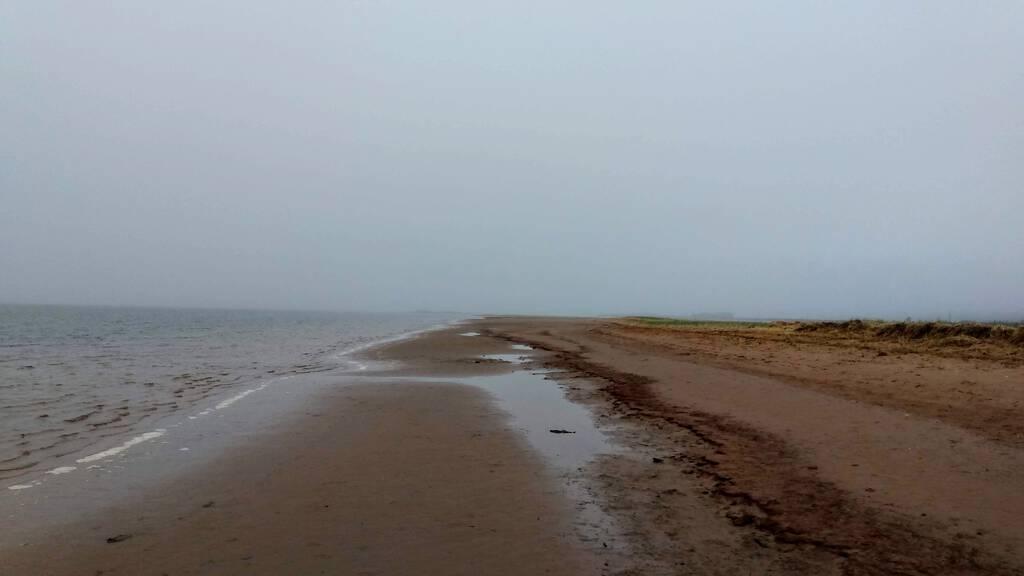 Tracadie Beach