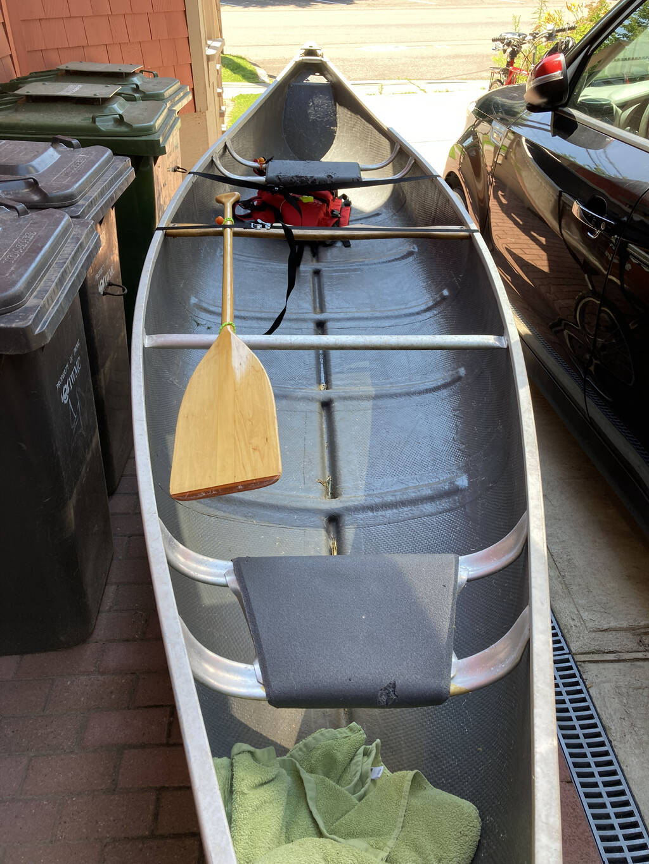 Threading my canoe into the back yard.