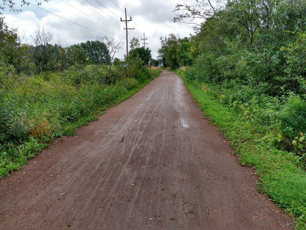 Photo of the Confederation Trail showing bicycle tracks in the mud