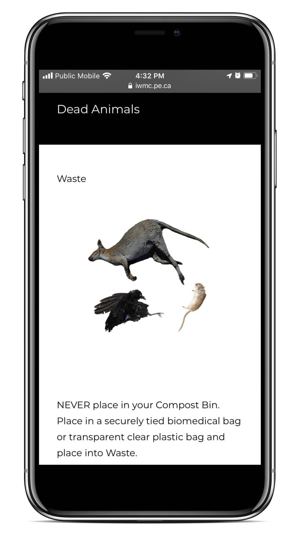 Screen shot of the IWMC waste sorted showing dead animals