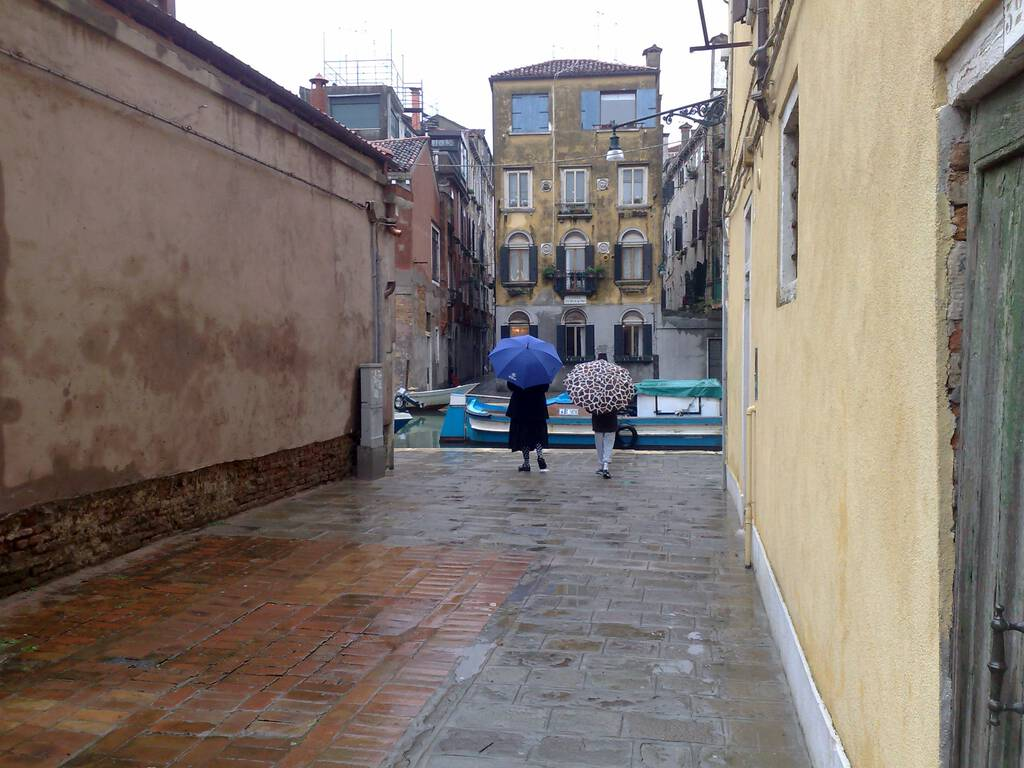Our dry street in Venice, later the same day