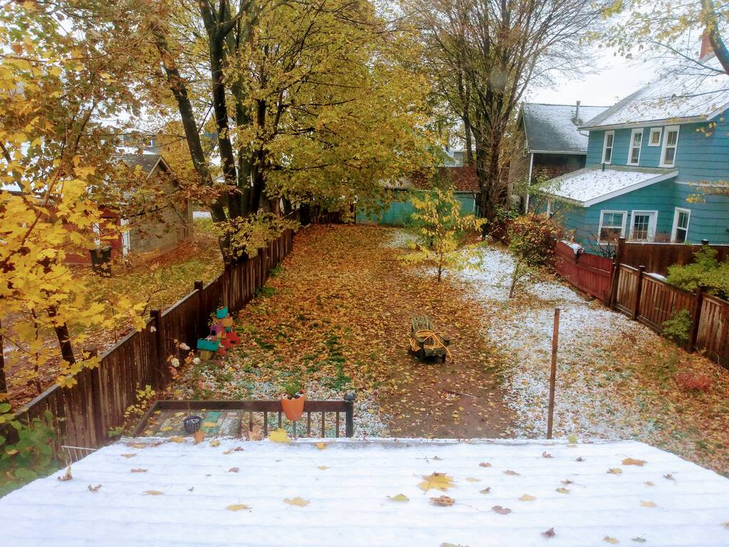 Photo from our upstairs back window into the back yard showing light snow on the ground