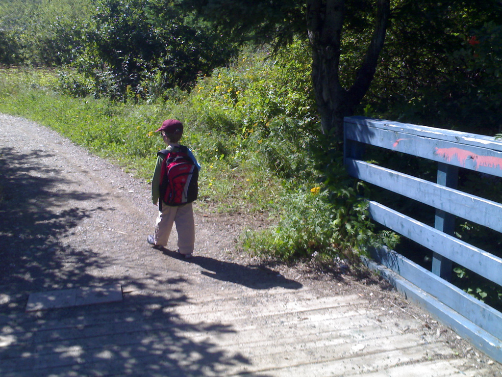 Oliver on the Trail