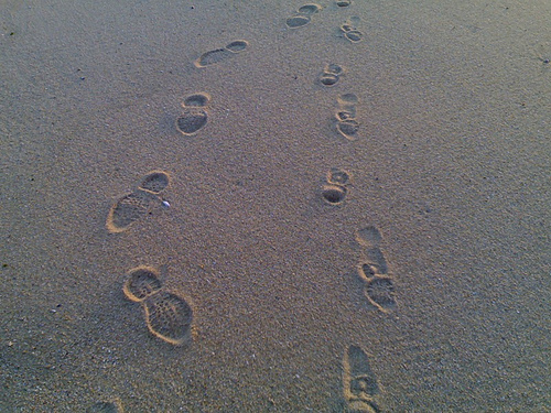 Peter + Oliver = Footprints