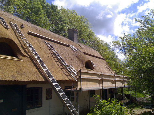 Fixing the Thatch