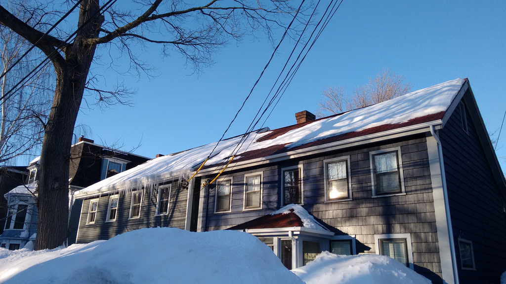 My proudest achievement: a roof free of ice dams (compare us to our neighbor to the left...)