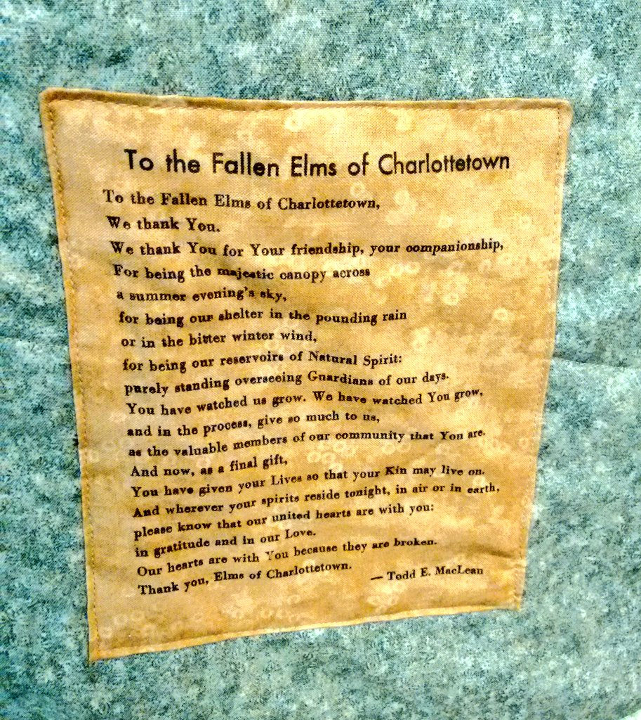 To the Fallen Elms of Charlottetown