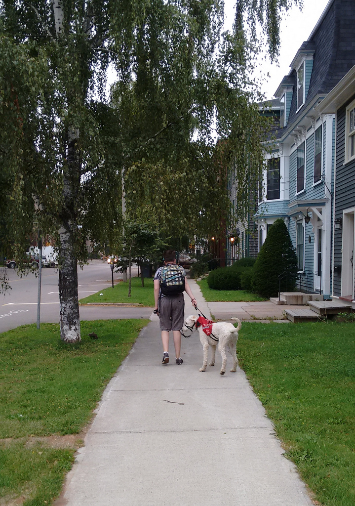 Oliver (and Ethan), on the first day of Grade 9