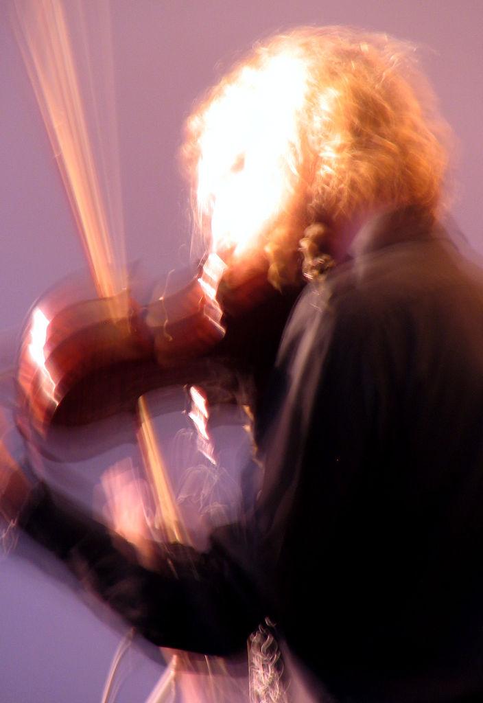 Wild Fiddler