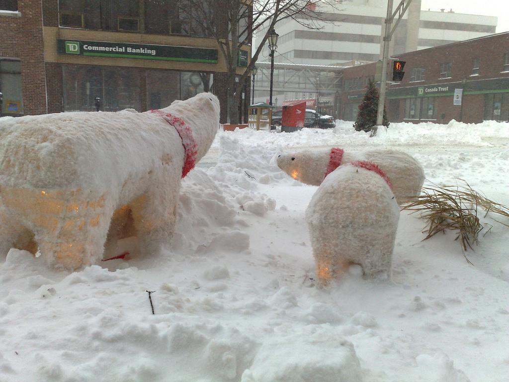 Snowy Polar Bears