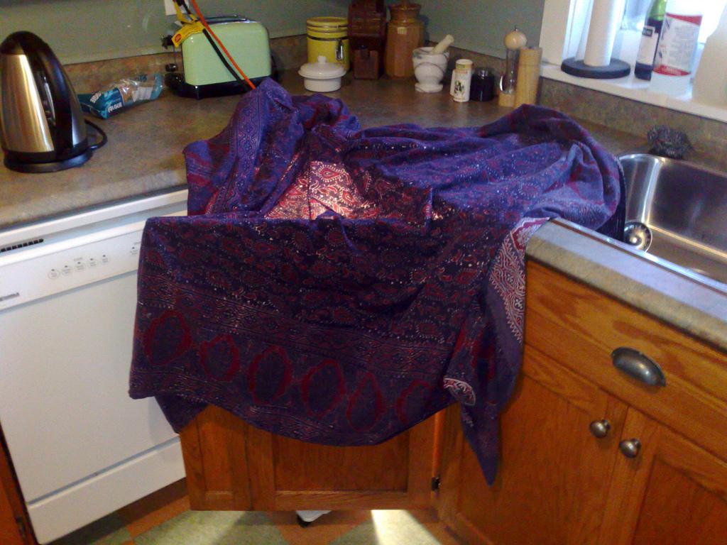 Dishwasher Freezing Prevention System