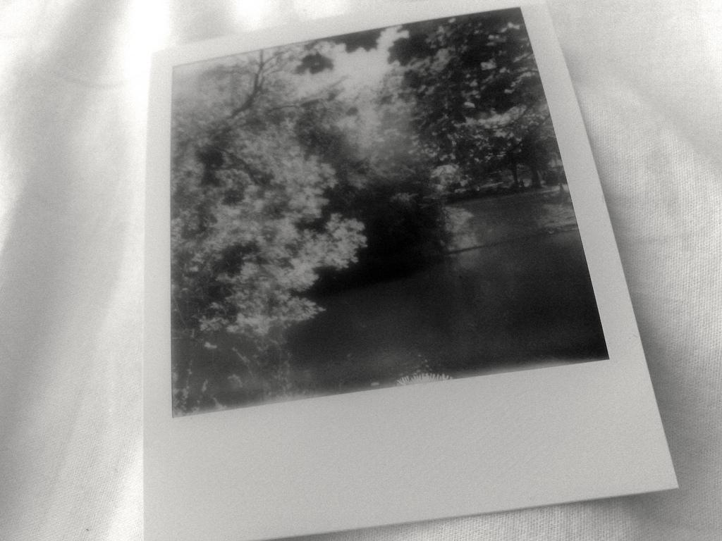 Black and White Polaroid Photo