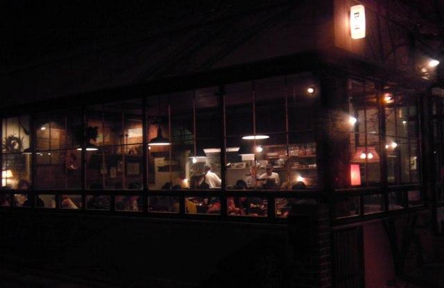 Bird in Osaka at Night