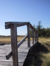 Bridge at Maple Plains Agro-Environmental Demonstration Project