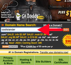 GoDaddy.com Screen Shot