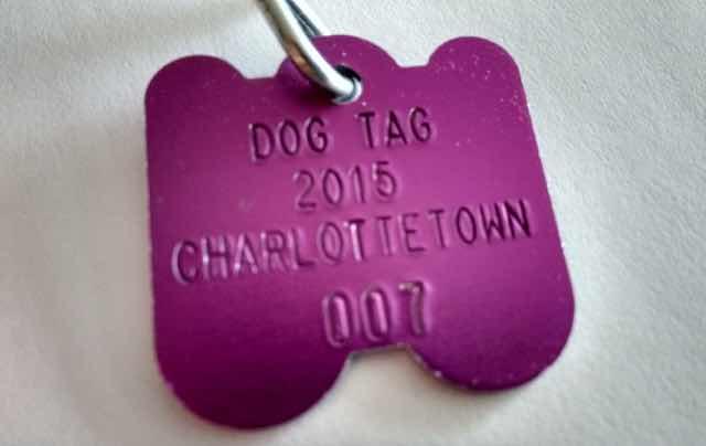 Ethan's 2015 Dog Tag
