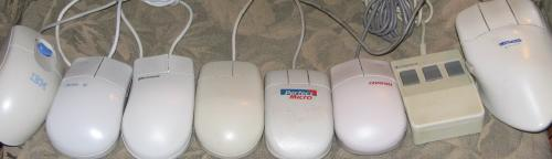 My Many Mice