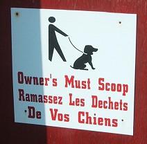 Owner's Must Scoop