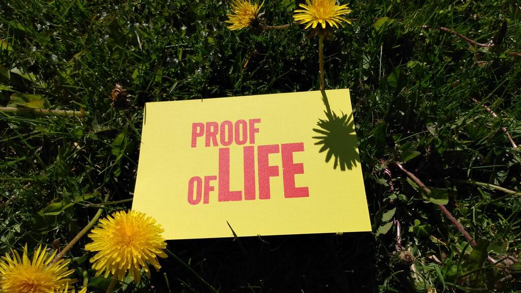 Proof of Life postcard (in the grass, red on yellow card)