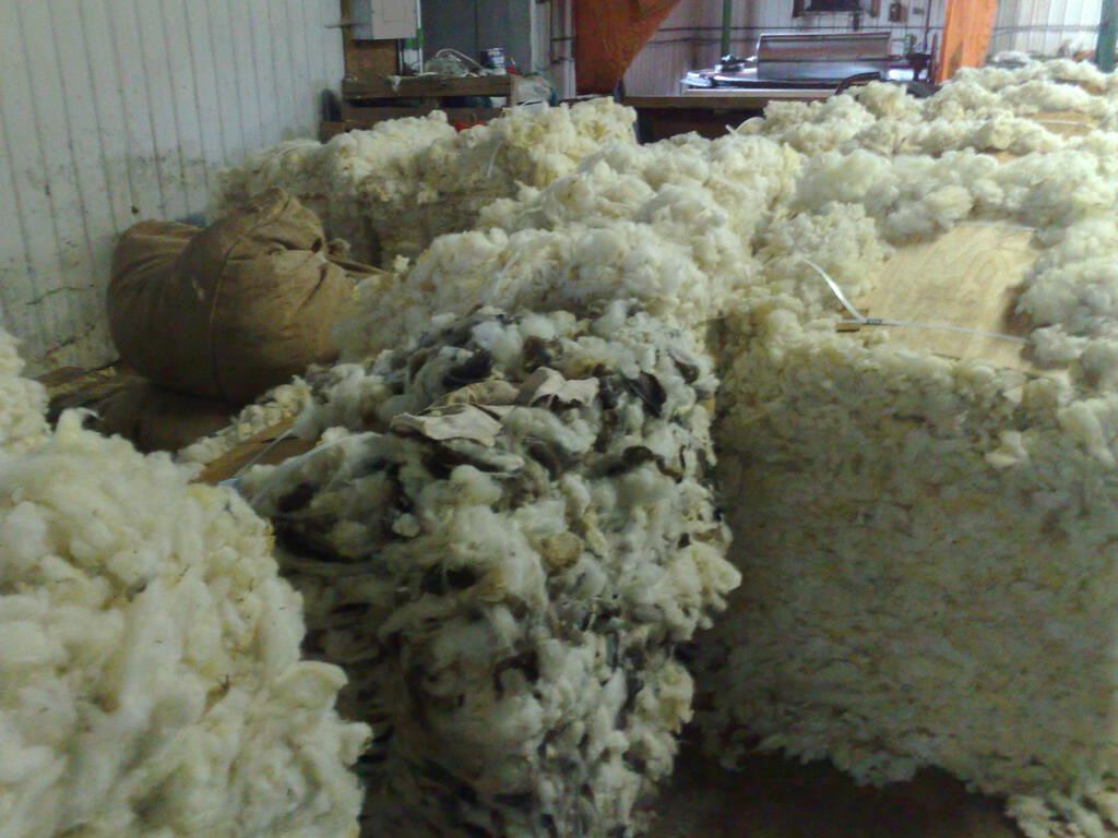 Raw Fleece