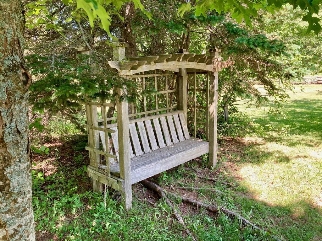 A bench in a shade grove at the PEI Preserve Company.
