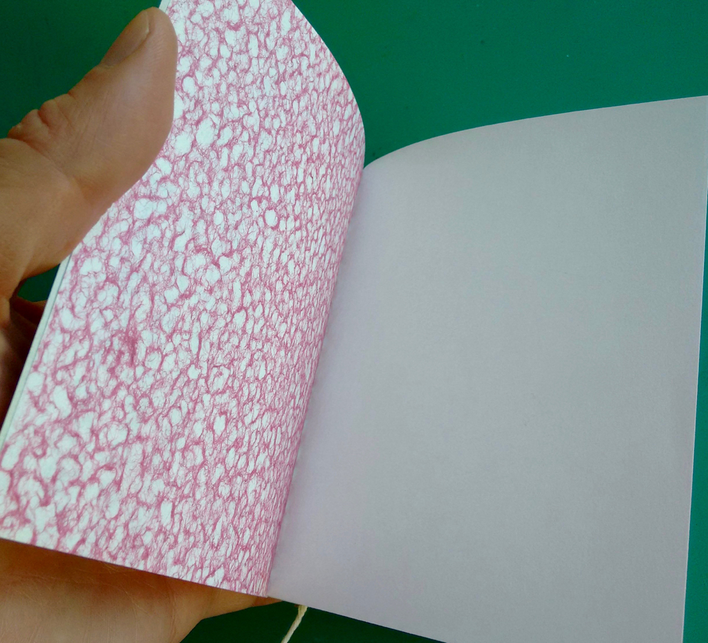 Notebook Endpapers