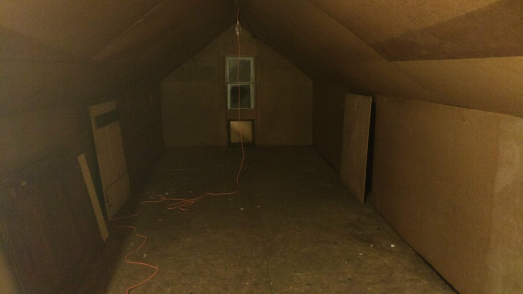 Photo of our attic once it was cleaned out