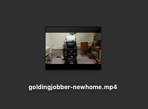 Screen shot of video icon on my Mac desktop