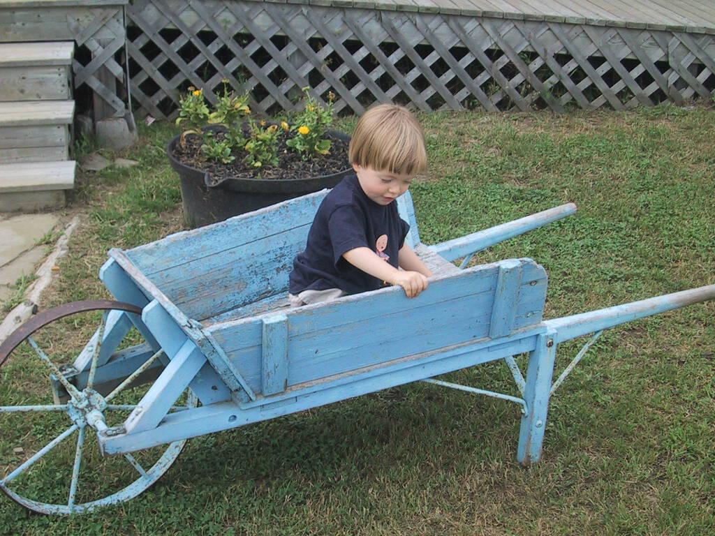 Oliver in a Wheelbarrow