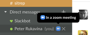 A detail from a screen shot showing my Slack status showing I'm in a Zoom meeting.